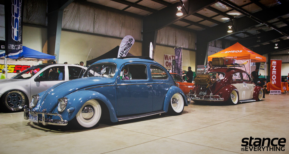 fitted_2014_beetles