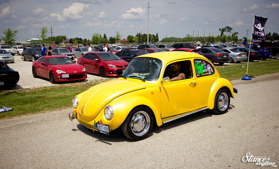 fitted-lifestyle-2016-yellow-beetle-1-dt