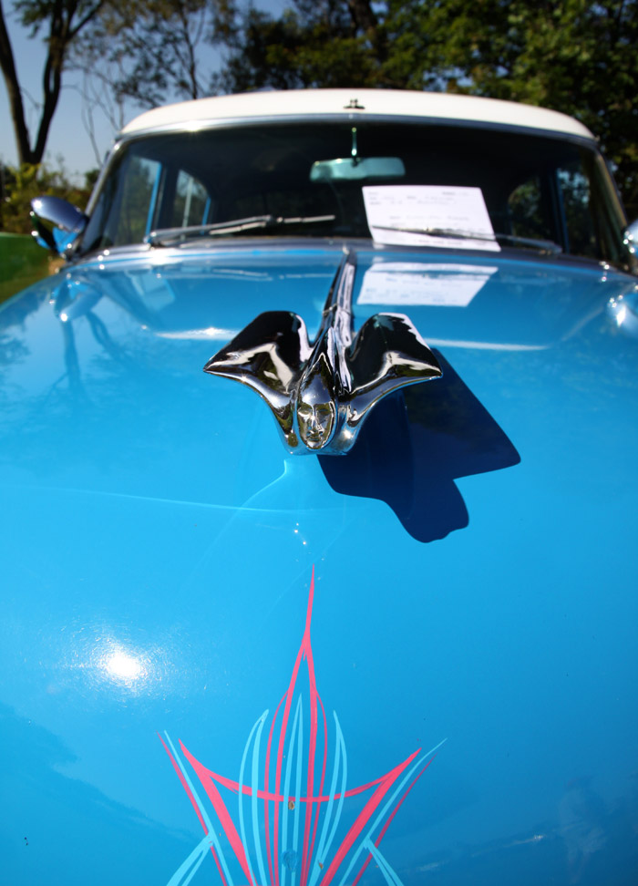 Now thats a hood ornament