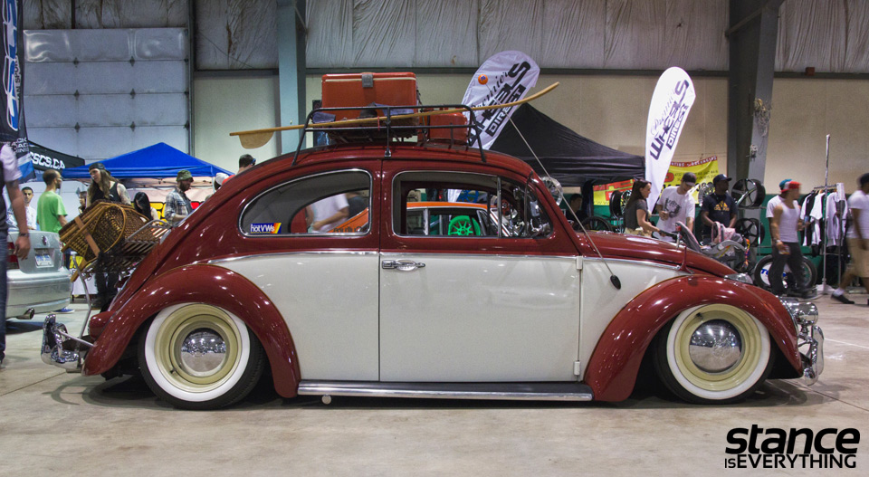 fitted_2014_beetles_2