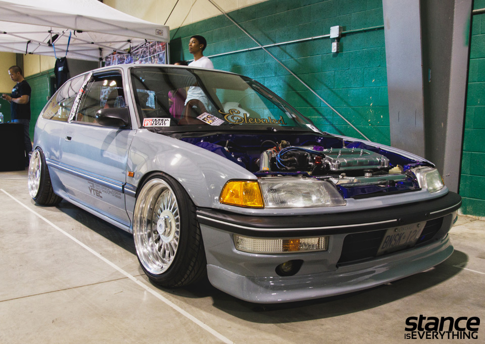 fitted_2014_honda_petey_1